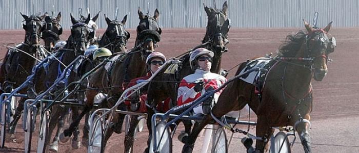 Horse Race Bus Rentals